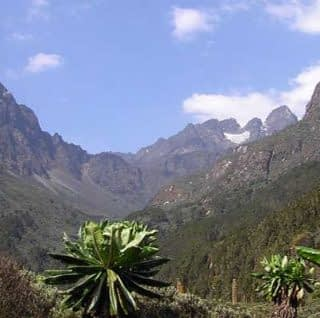 Overview of the Mount Rwenzori in Uganda