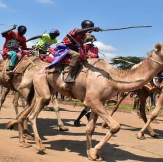 Local community riding camel in maralal