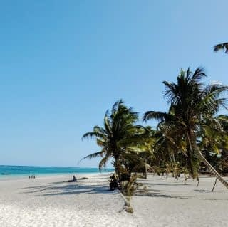 The White Sands of Diani Beach