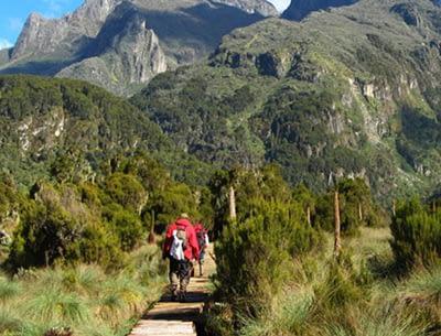 Rwenzori Mountains